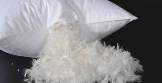 Como lavar travesseiros de pena